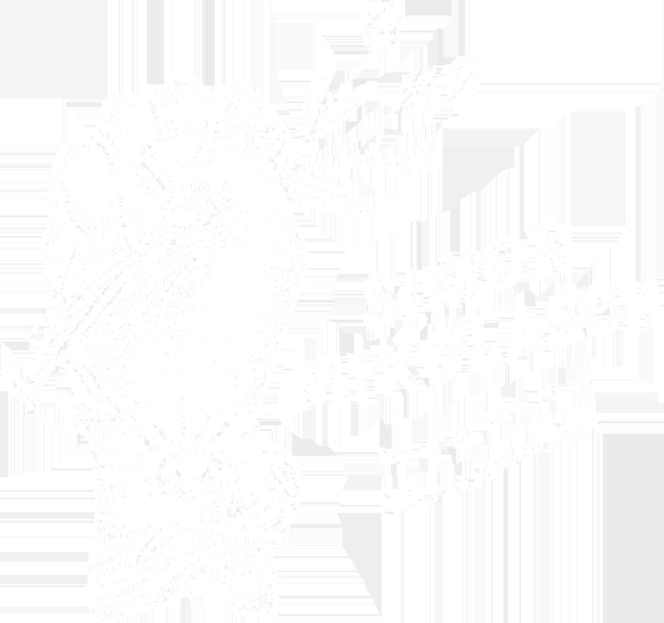 Simon Mikolasch  -  Hochzeitsfotograf